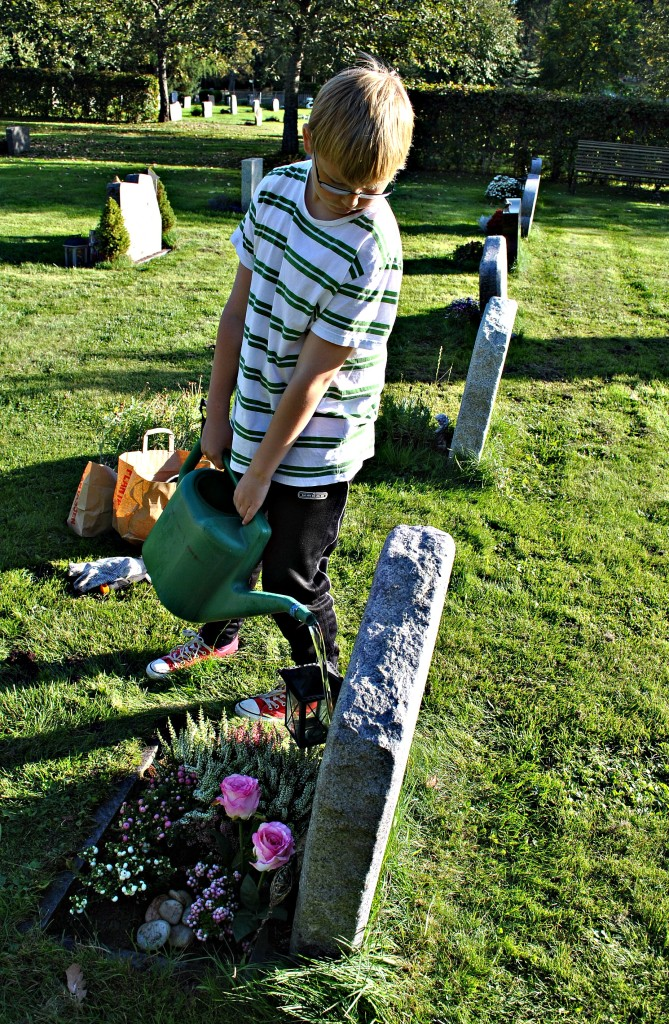 Theo kirkegård 2