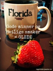 FloridaJordbærMinner