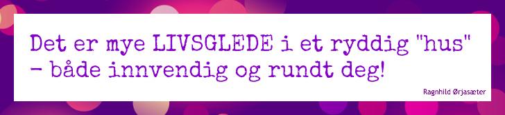 ryddig1