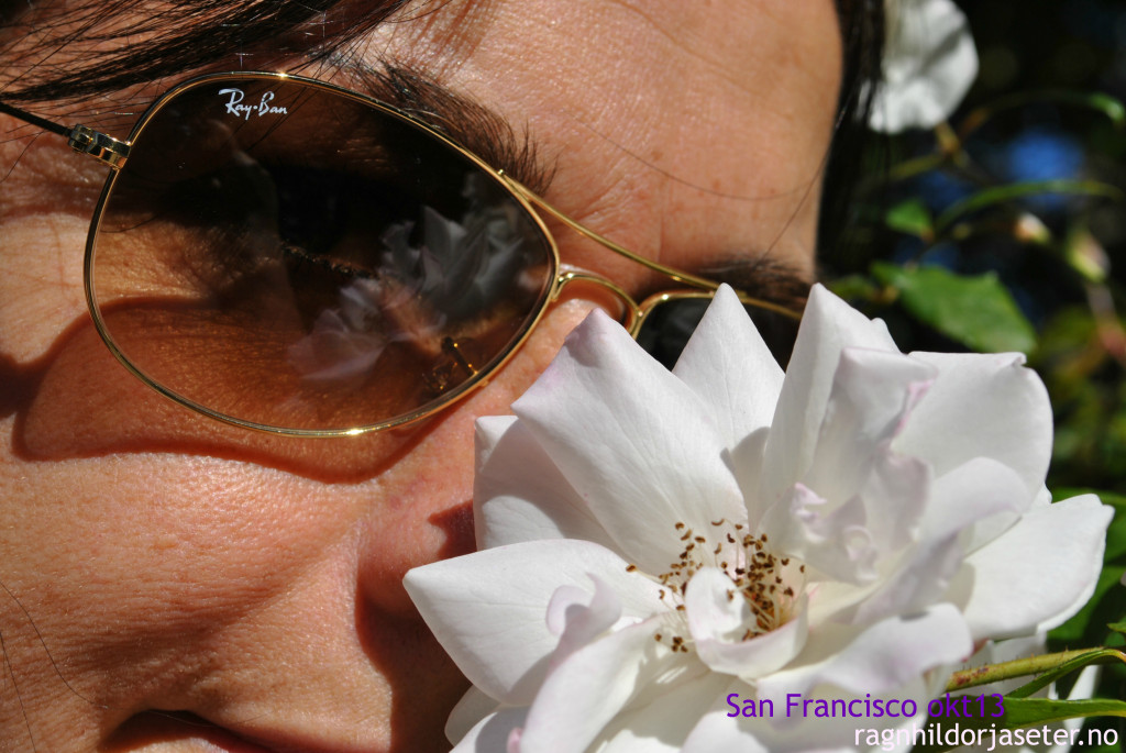 sanfran blomster